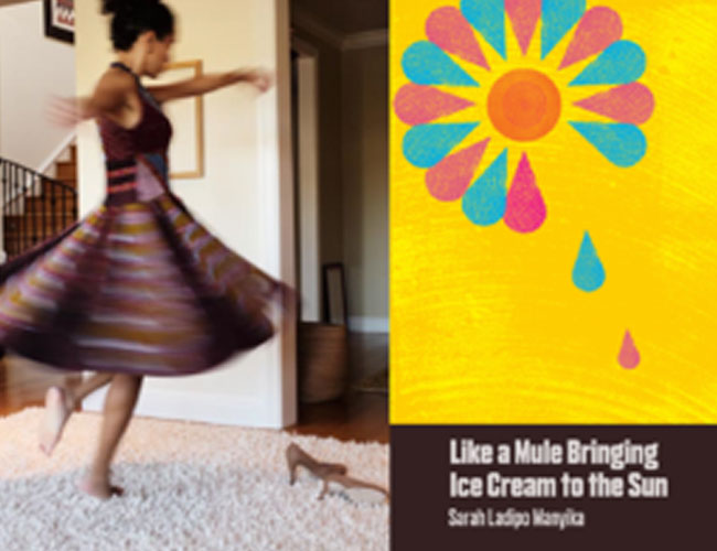 Like a Mule Bringing Ice Cream to the Sun Shortlisted for Goldsmiths Prize