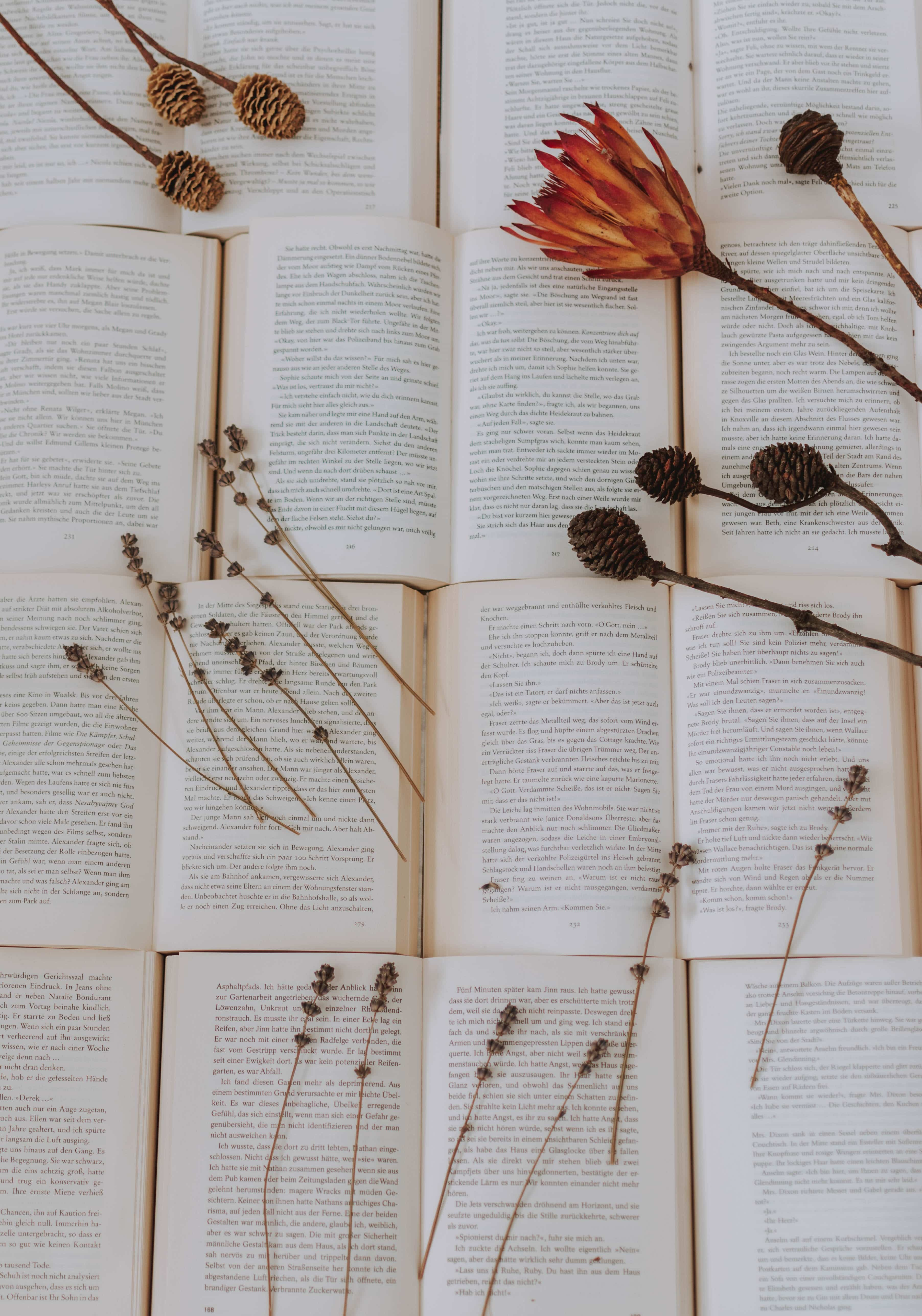 Love in Literature: Reading Love in Literature